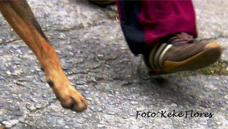 Quem Realmente nos Ama Caminha ao Nosso Lado